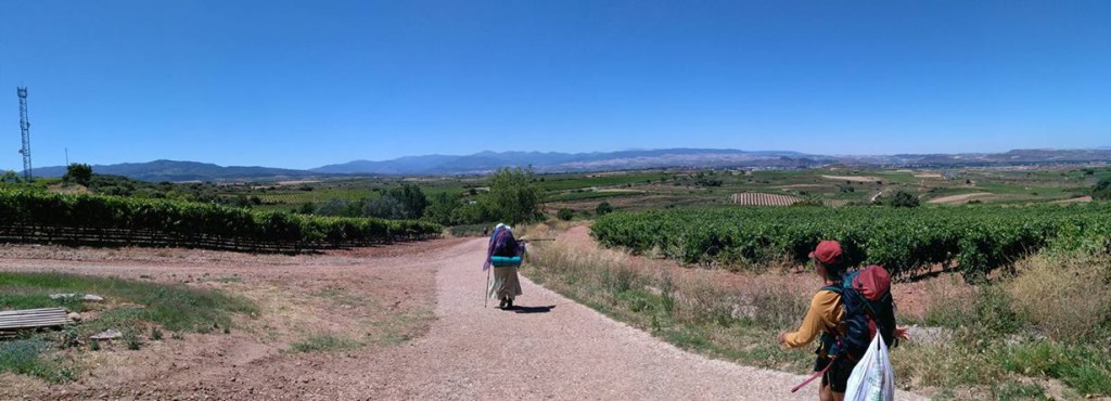 Vinice v kraji La Rioja - viník opět schovaný za fotoaparátem :-)